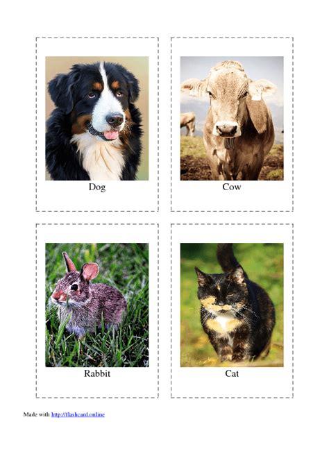 farm animals flashcards