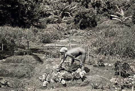Treehouse nudist ranch