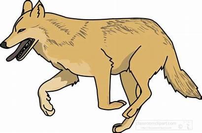 Wolf Clipart Animals Transparent Background