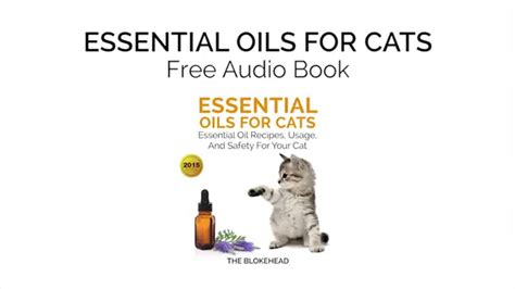 cats essential oils essential oils for cats essential oil recipes usage and safety for your cat youtube