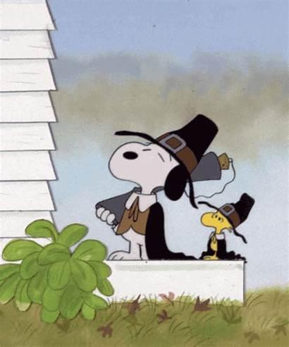 Brown Woodstock Thanksgiving Charlie 1973 Screwloose Duck