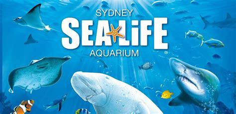 sea aquarium vouchers merlin entertainments sydney new south wales qantas holidays