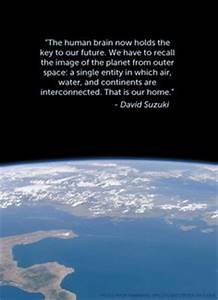44 Best Environ... Onegreenplanet Quotes