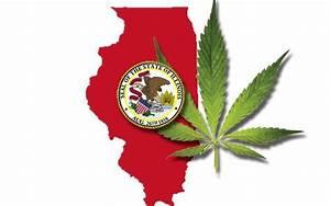 A Robust Medical Marijuana Program Would Make Sense In