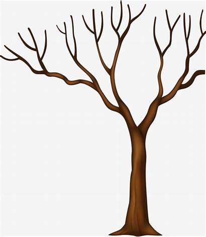 Trunk Cartoon Clipart Tree Tronco Desenho Branch
