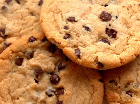 chocolate chip cookie recipe egg   dairy