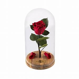 Rose In Glas : beauty and the beast rose live forever rose in glass live ~ Frokenaadalensverden.com Haus und Dekorationen