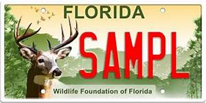 Florida Deer License Plate for Wildlife and Habitat Funding