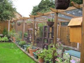 cat runs cat proofed gardens page 11 pet forums