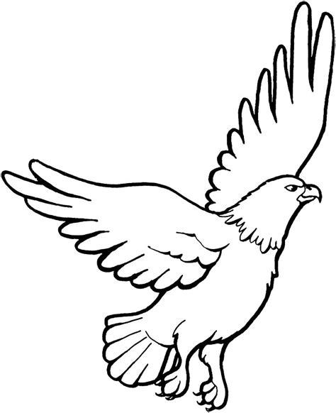 sketsa gambar burung elang untuk mewarnai