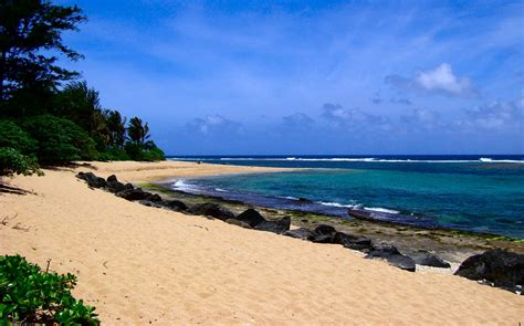 Stranded On a Deserted Island Game