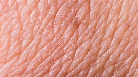 biox    skin   cosmetics industry