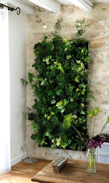Visuroom  Living Wallsthe Indoor Vertical Garden