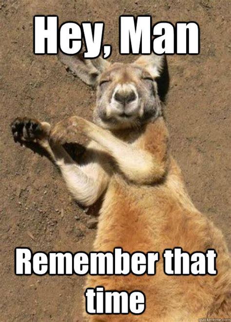 Kangaroo Meme - stoned kangaroo memes quickmeme