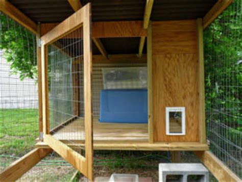 cat enclosures outdoor cat runs  cat enclosure