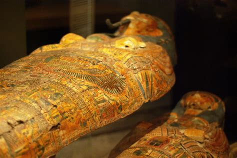 egyptian sarcophagus opened   tv