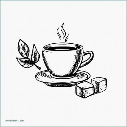 Tea Cup Sketch Illustration Drawing Teacup Leaves