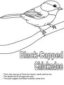 HD wallpapers maine coloring page