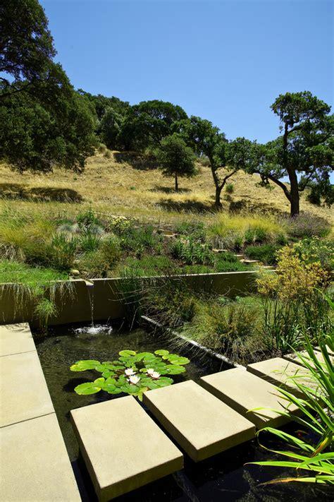 bright  pond fashion san francisco modern landscape
