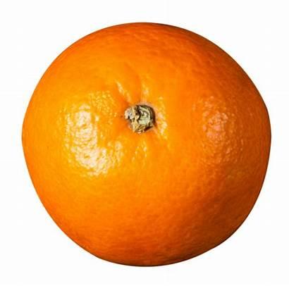 Orange Fruit Fruits Toppng Pngpix Vegetables Oranges