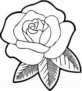 The Images Collection of S spring flower drawing ideas of