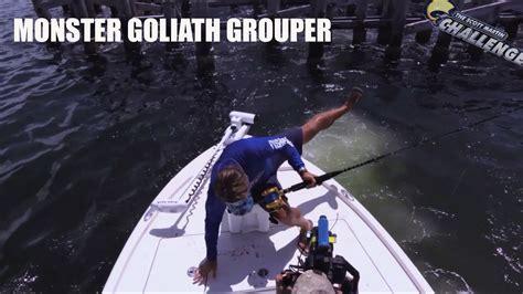 grouper goliath monster pound season catch smc lines line hand martin scott challenge