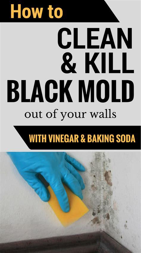 mold clean soda baking vinegar kill walls