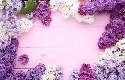 Lilac Flowers Flower Frame Purple Wood Lilacs