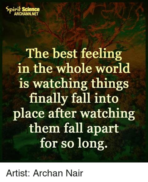 Fell Into Some Feelings Meme - spirit science the best feeling in the whole world is watching things finally fall into place