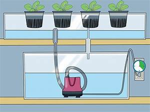 3 Ways To Build A Homemade Hydroponics System