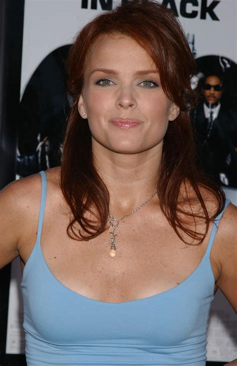 Photo Collection Dina Meyer Xyz Hot