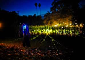 Best Pumpkin Patch In Bakersfield by Haunted Hayride And Pumpkin Patch In Ojai California