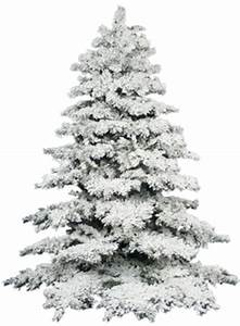Snow Pine Tree Png | www.pixshark.com - Images Galleries ...