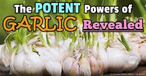 Black Garlic and Sprouted Garlic Have Many Health Benefits