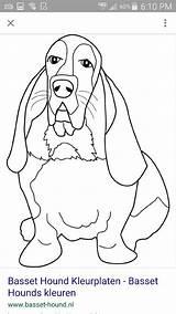 Coloring Hound Dog Basset Mandala Adult Bassett sketch template