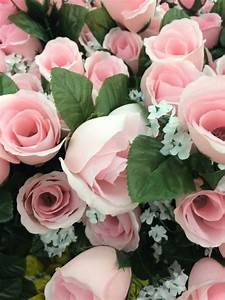 pink roses on Tumblr