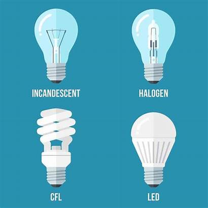 Bulbs Led Types Future Lighting Lights Which