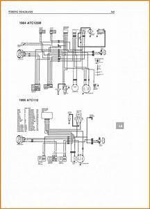 Sunl 50cc Atv Wiring Diagram