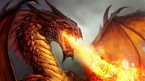 fire dragon wallpapers  background pictures