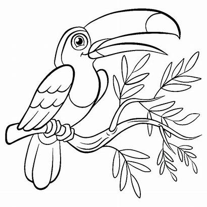 Birds Coloring Pages Printable Children Bird Sheets