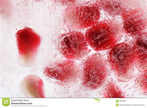 frozen pomegranate frozen pomegranate seeds stock photography image 3818522