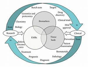 Tissue Banking  Bioinformatics  And Electronic Medical
