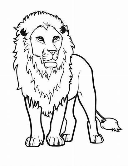 Lion Drawing Coloring Awesome Pages Drawings Colorluna