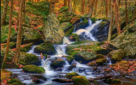 Rocks Landscape Nature Autumn Leaves Stones Rocks Waterfall Wallpaper Hd