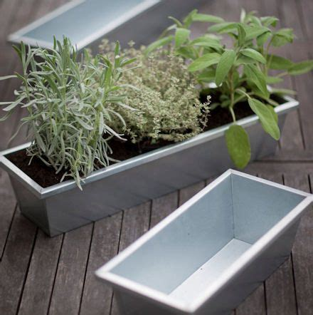 Outside Window Sill Planter by Galvanised Window Sill Planter Garden Galvanized