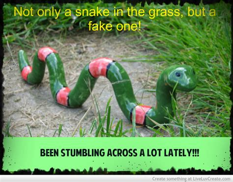 Quotes About People Being Snakes Quotesgram