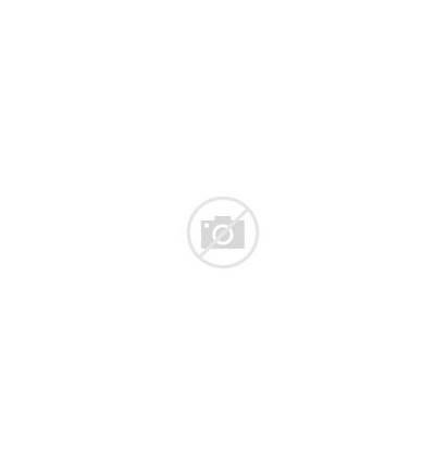 Garfield Christmas Shopping Iron