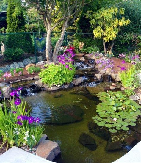 25 best ideas about water gardens on diy