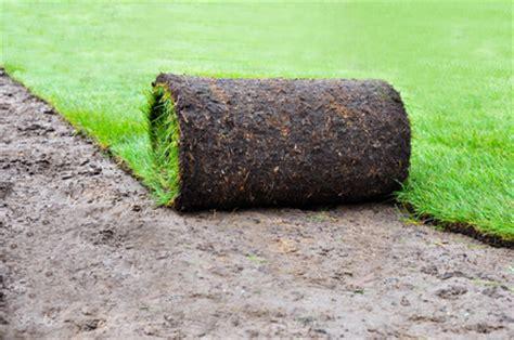 Rollrasen Oder Kunstrasen  Welcher Rasen Für Welchen Typ?