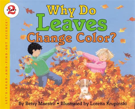 why do trees change color why do leaves change color by betsy maestro scholastic